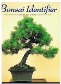 BONSAI IDENTIFIER. 40 MAIN SPECIES DESCRIBED AND ILLUSTRATED
