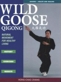 WILD GOOSE QIGONG: HISTORY, EXERCISE, RESULTS