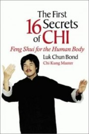 THE 16 SECRETS OF CHI:FENG SHU FOR THE HUMAN BODY